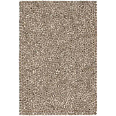 Amberley Grey Area Rug Rug Size: 5 x 76
