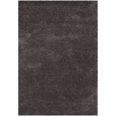Plymouth Shag Brown Area Rug Rug Size: 5 x 76