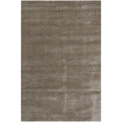 Sara Shag Gray Area Rug Rug Size: 2 x 3