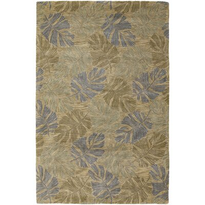 Pierview Brown Area Rug Rug Size: 79 x 106