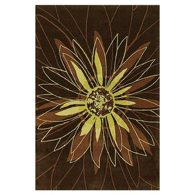 Brown Area Rug Rug Size: Rectangle 5 x 76