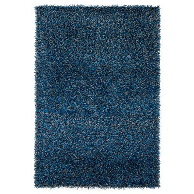 Zara Hand Woven Blue Area Rug Rug Size: Rectangle 4 x 6