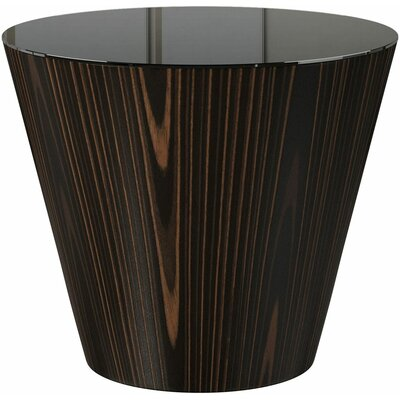Dorset End Table Finish: Cathedral Ebony/Black