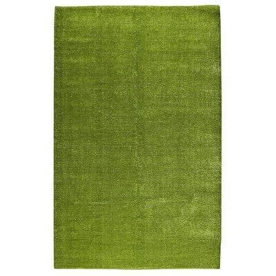 Green Area Rug Rug Size: 8 x 10