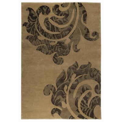 Andaluca Beige/Brown Area Rug Rug Size: 83 x 116