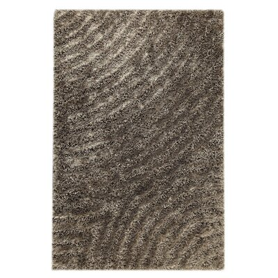 Camilla Grey Area Rug Rug Size: Rectangle 52 x 76