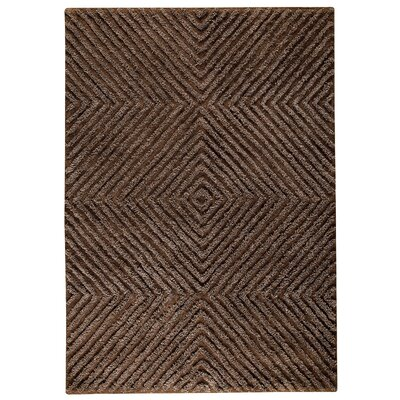 Seneca Brown Area Rug Rug Size: 56 x 710