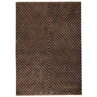 Seneca Brown Area Rug Rug Size: 56 x 710