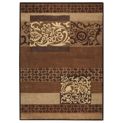 Dannielle Brown Area Rug Rug Size: 5 x 8