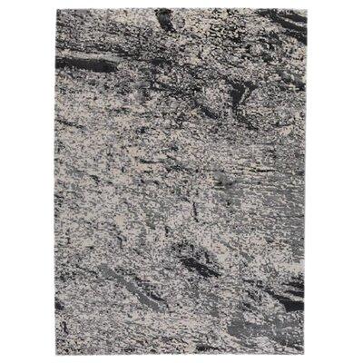 Cardoza White/Grey Area Rug Rug Size: 52 x 76
