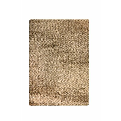 Laurice Camel Area Rug Rug Size: 5 x 8