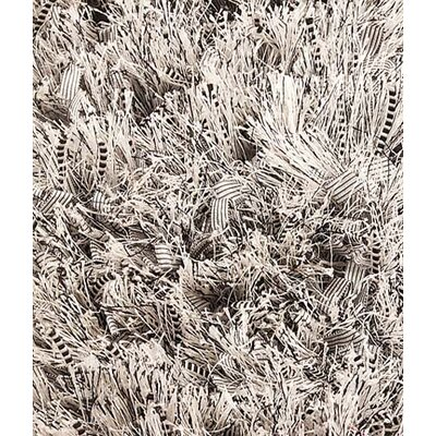 Cabra Silver Area Rug Rug Size: 52 x 76