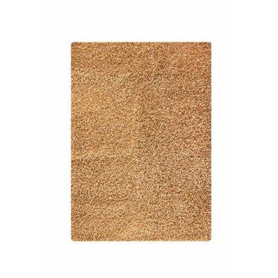 Hirsute Beige Solid Area Rug Rug Size: 5'2