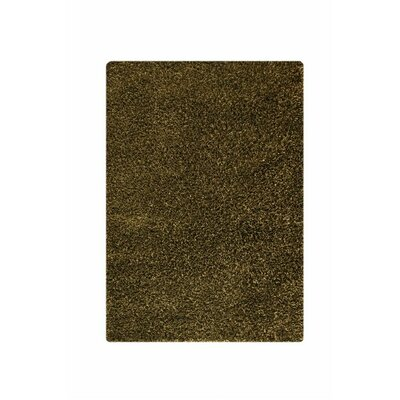 Hirsute Green Solid Area Rug Rug Size: 710 x 910