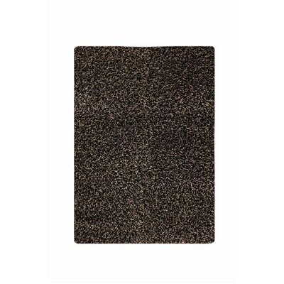 Licorice Rug Rug Size: Rectangle 52 x 76
