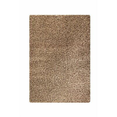 Orange Brown Area Rug Rug Size: 52 x 76