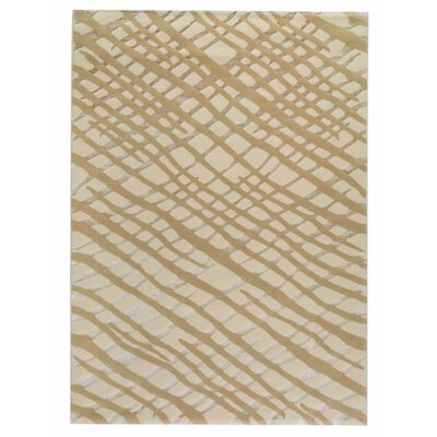 Congo White/Grey Area Rug Rug Size: 710 x 910