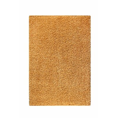 Olto Gold Area Rug Rug Size: 52 x 76