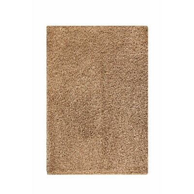 Olto Brown Area Rug Rug Size: 52 x 76
