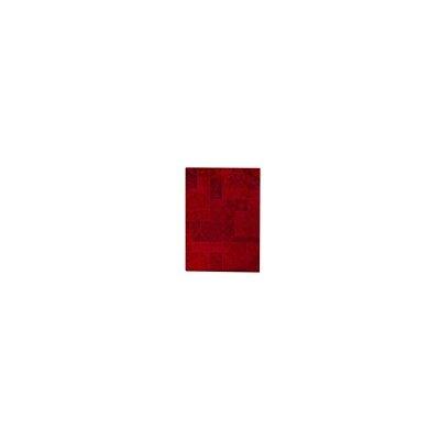 Santtur Red Area Rug Rug Size: 52 x 76