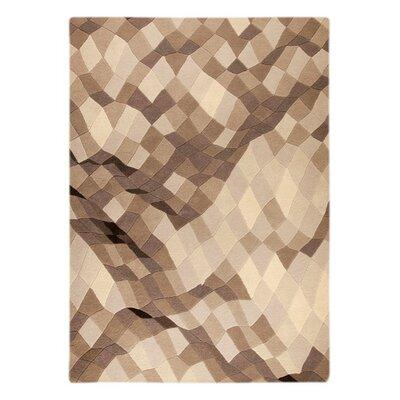 Shades Gray Area Rug Rug Size: 52 x 76