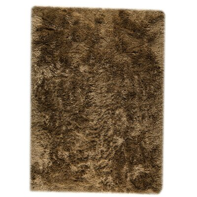Dubai Hand-Woven Hazelnut Area Rug Rug Size: Rectangle 46 x 66