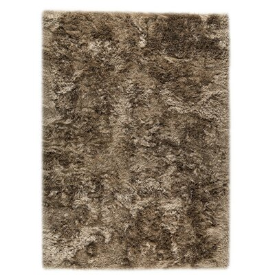 Dubai Hand-Woven Tiramisu Area Rug Rug Size: Rectangle 5'6