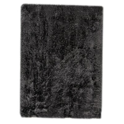 Dubai Hand-Woven Charcoal Area Rug Rug Size: Rectangle 3 x 54