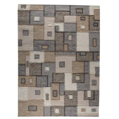 Khema8 Hand-Woven Gray Area Rug Rug Size: 83 x 116