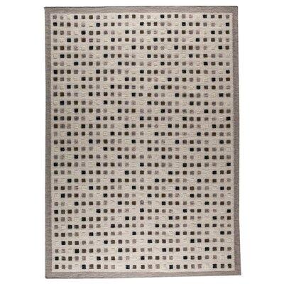 Khema1 Hand-Woven Gray Area Rug Rug Size: 46 x 66