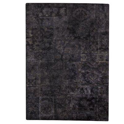 Sarangi Hand-Tufted Black Area Rug Rug Size: 52 x 76