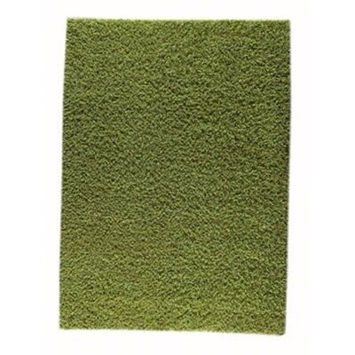 Howzen Mix Green Area Rug Rug Size: 56 x 710