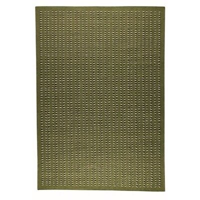 Palm Dale Green Area Rug Rug Size: 46 x 66