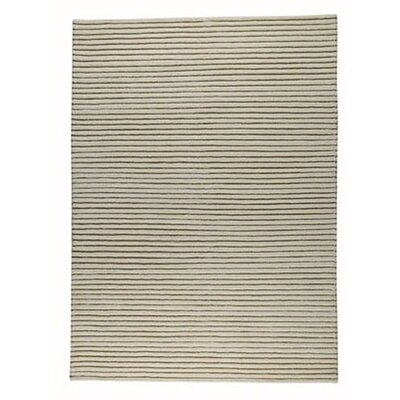 Division White Area Rug Rug Size: 66 x 99