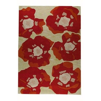 Tera Orange Area Rug Rug Size: Rectangle 66 x 99