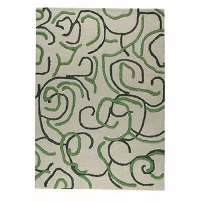 Curio Green Rug Rug Size: 46 x 66