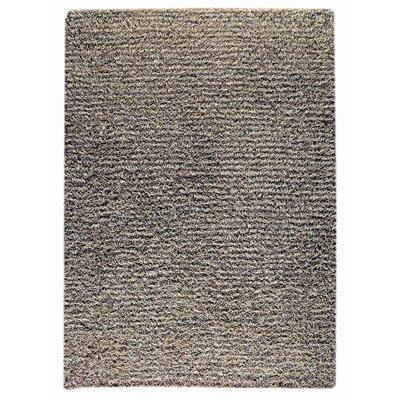 Weeds Grey/Beige Area Rug Rug Size: 66 x 99