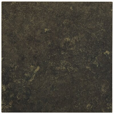 "Shaw Floors Lunar 6"" Porcelain Tile in Graphite at Sears.com"