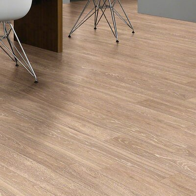Agape 5 x 48 x 10mm Laminate Flooring in Inheritance