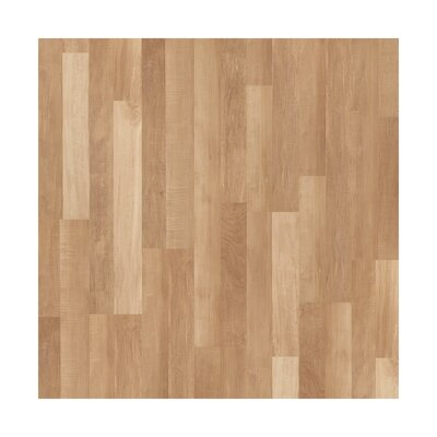 Forum 8 x 48 x 6.5mm Maple Laminate in Abstract