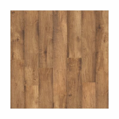 Forum 8 x 48 x 6.5mm Hickory Laminate Flooring in Vista