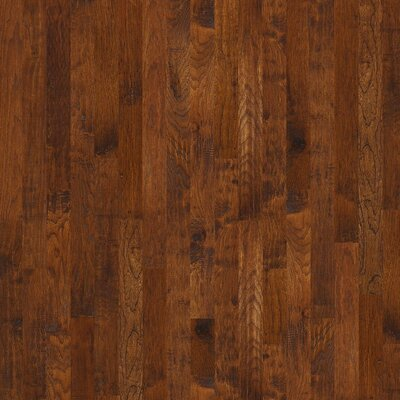 Zellwood 3-1/4 Solid Hickory Hardwood Flooring in Bridgeport