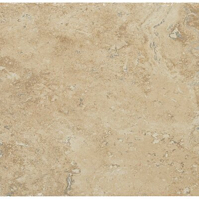 Alder Creek 13 x 20 Porcelain Field Tile in Cleveland