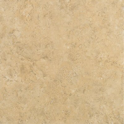 Delight 17 x 17 Ceramic Field Tile in Carter