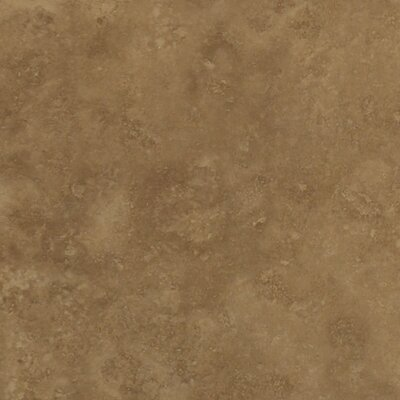 Conway 10 x 13 Ceramic Field Tile in Herby
