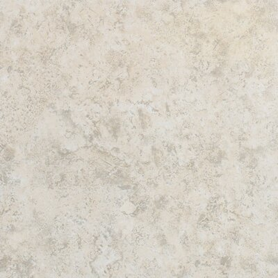 Delight 13 x 13 Ceramic Field Tile in Morton