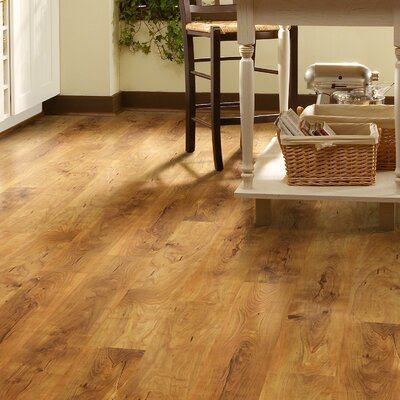 Fairfax Plus 8 x 48 x 8mm Pine Laminate Flooring in Herndon