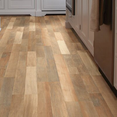 Forum 8 x 48 x 6.5mm Maple Laminate Flooring in Panorama