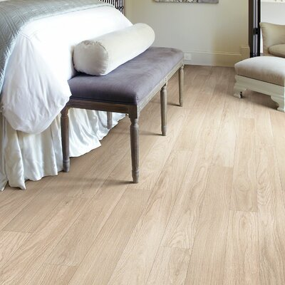 Westgate 5 x 48 x 8mm Oak Laminate in Ashford