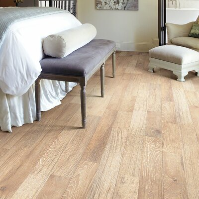 Belvoir Plus 8 x 48 x 8mm Laminate Flooring in Clermont